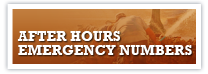 After Hours Emergency Numbers